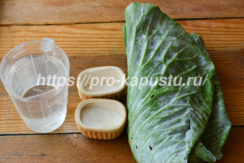 Как заквасить верхние листья капусты